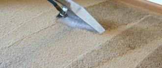 Доверяйте работу профессионалам: чистим ковролин