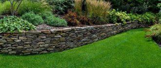 Бордюр – один из важных элементов ландшафтного дизайна
