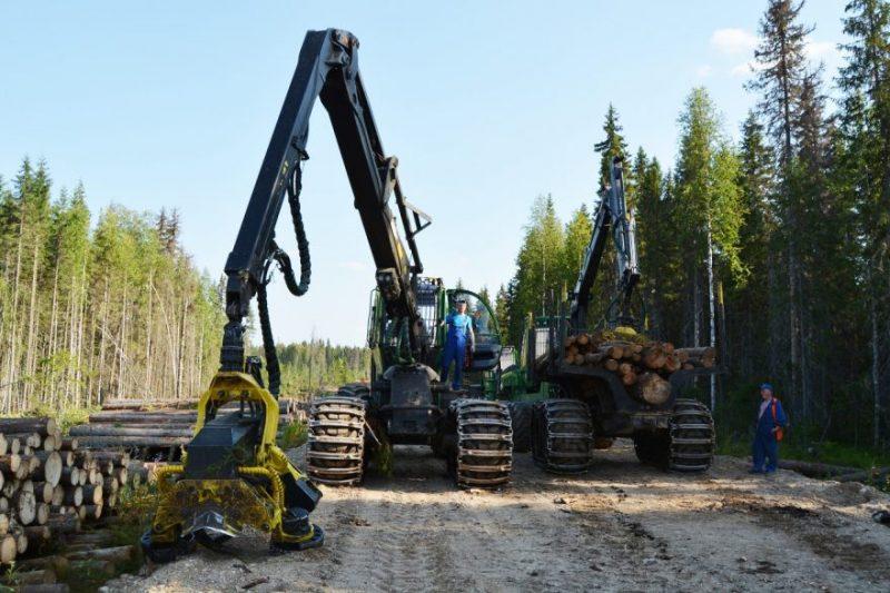 Современная рубка леса, использование форвардера в ней