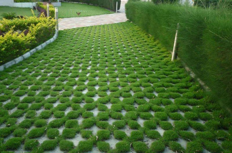Использование газонной решетки на загородном участке